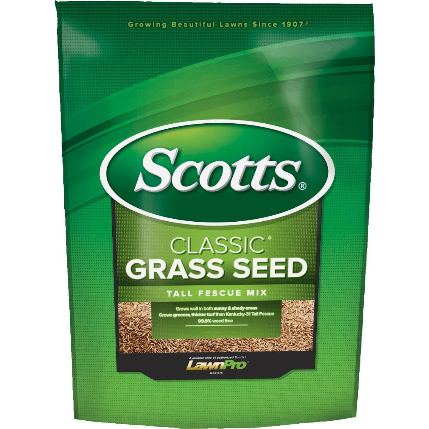 Scotts Classic 7 Lb. 1550 Sq. Ft. Coverage Tall Fescue Grass Seed Image 1