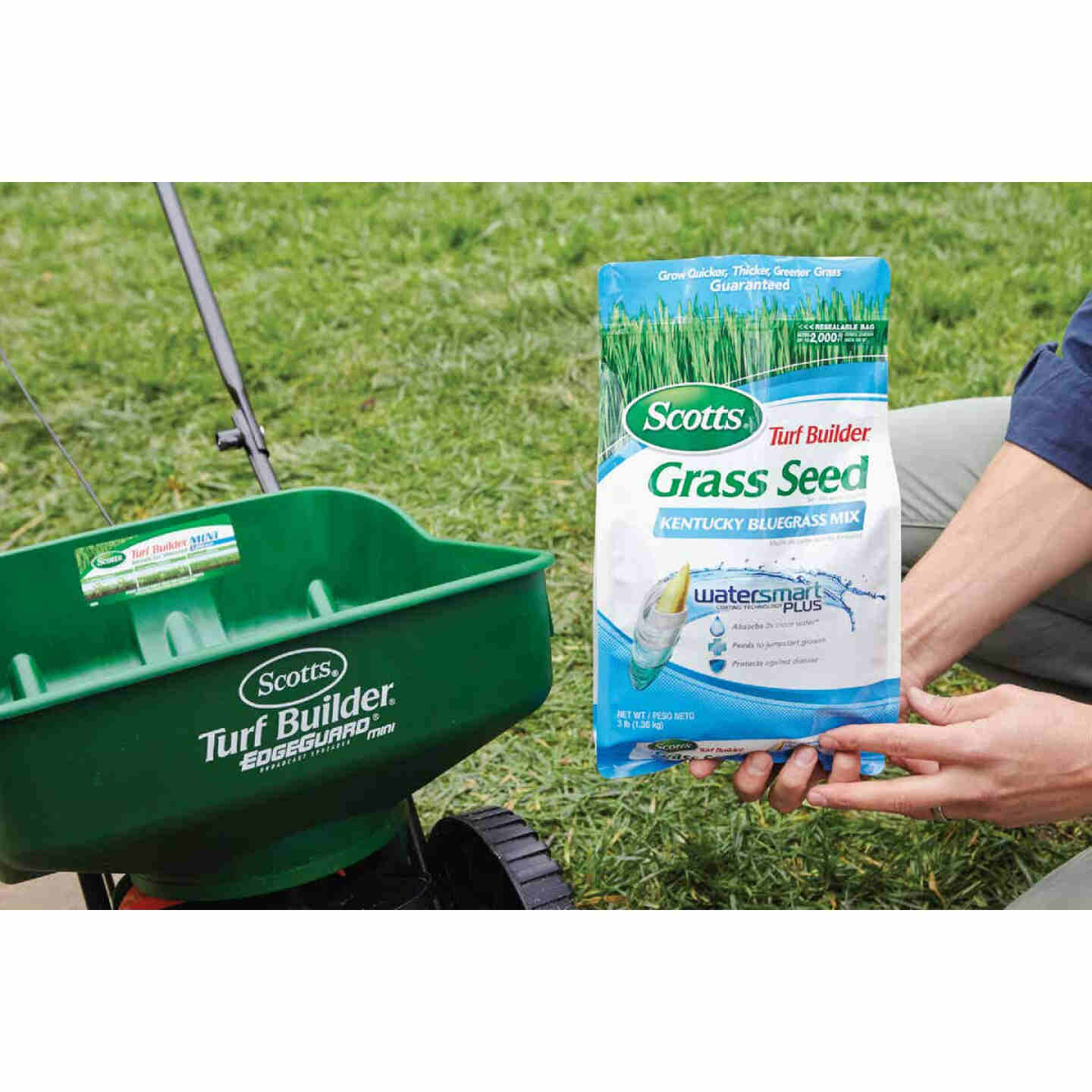 Scotts Turf Builder 3 Lb. Up To 2000 Sq. Ft. Coverage Kentucky Bluegrass Grass Seed Image 2